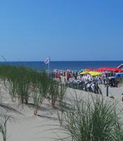 zee strand duin bij Hotel B&B Seahorse